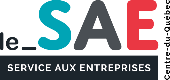 Logo du SAE version signature