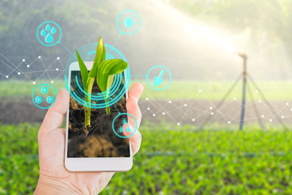 Application mobile en agriculture