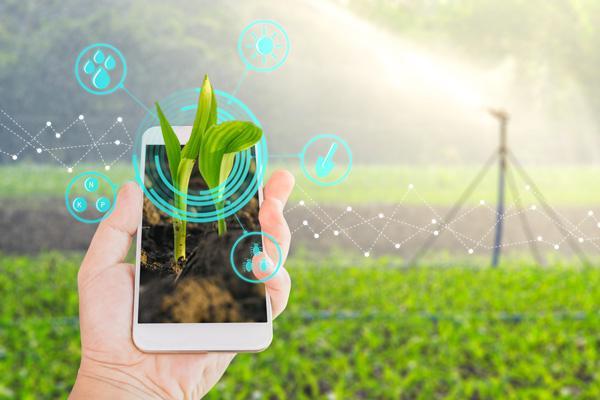 Application mobile en agriculture